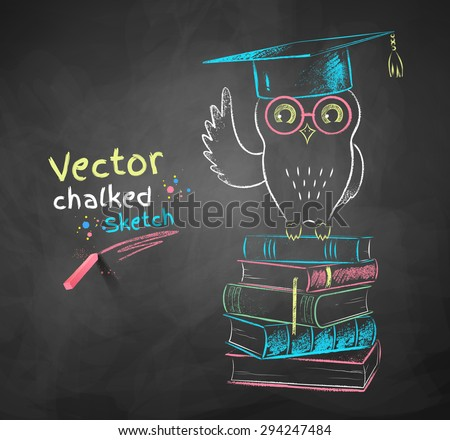 Vector color chalk drawing of owl sitting on books. - stock vector