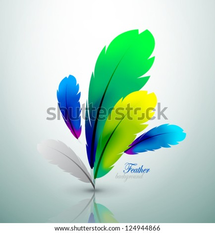 Vector colorful feather design