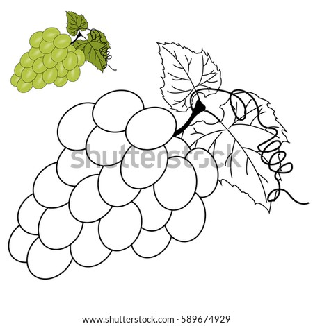 coloring page for children grapes - Grapes Coloring Page