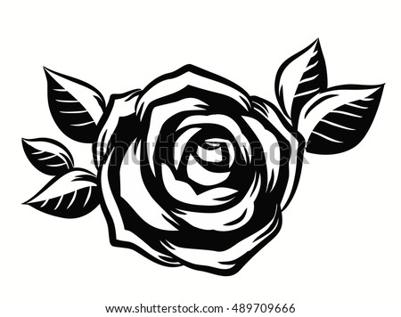 Line Art Rose Flower : Vector contour beautiful roses flower on stock hd royalty
