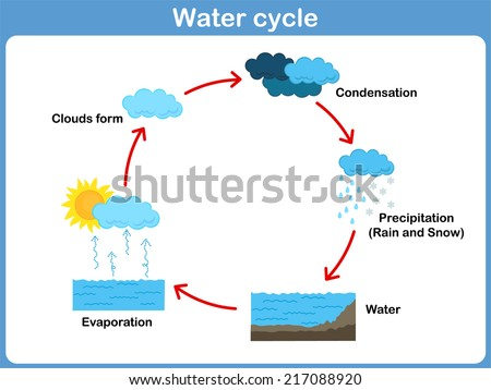 Vector Cycle of water for kids - stock vector