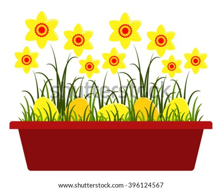 vector daffodils and easter eggs in planter isolated on white background