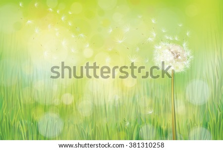 Vector dandelion on spring  background. - stock vector