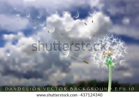 vector dandelion with flying seeds on cloudy sky - stock vector