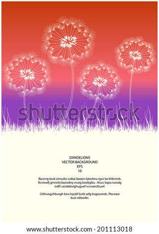 vector dandelions and grass silhouettes in sunset - stock vector