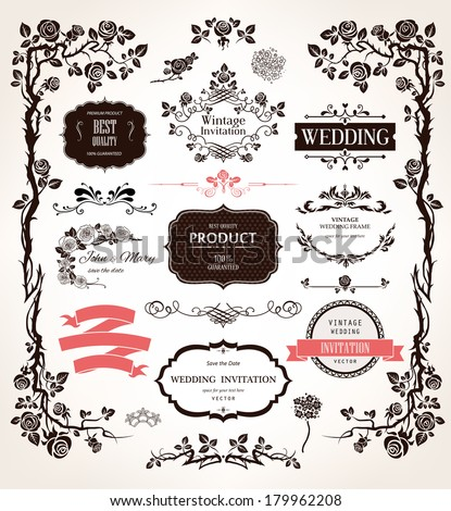 Vector design elements and calligraphic decorations for wedding and holiday event - stock vector