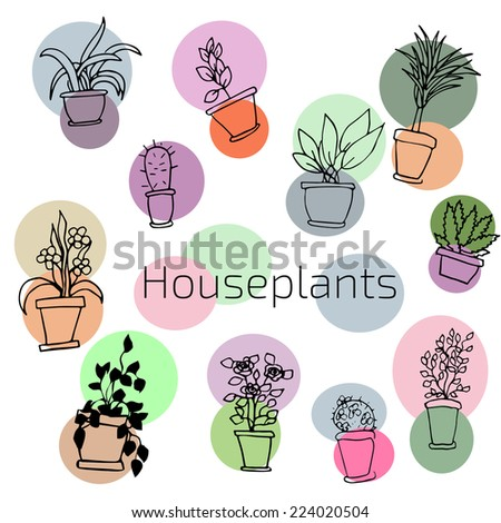 Vector design set of house plants in colorful circles.  Illustration - stock vector