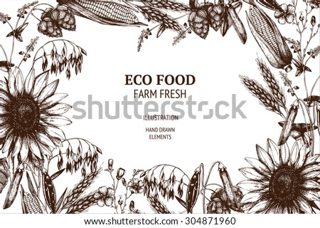 Vector design with ink hand drawn agriculture plants sketch. Vintage eco plants illustration - stock vector