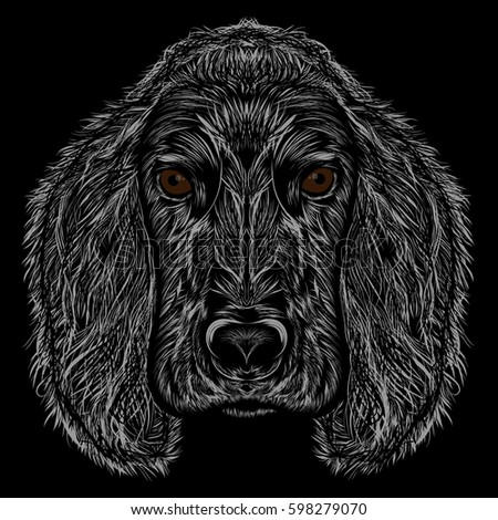 Vector dog. Abstract silhouette of a head Cocker Spaniel on a black background