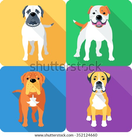 American bulldog vector - photo#24