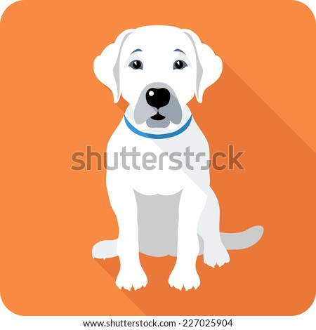 Vector dog Labrador Retriever sitting icon flat design
