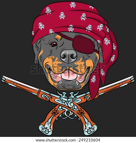 Vector Dog Rottweiler Pirate with pistols, wearing red bandana and eye patch - stock vector