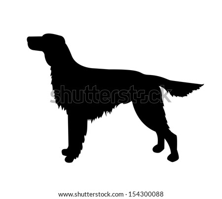 Pin Irish Setter » Kopf Folienaufkleber 103 on ...