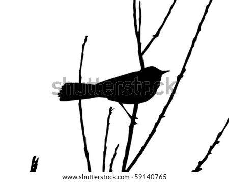 vector drawing bird on branch - stock vector