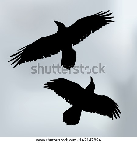 Vector drawing/Flying ravensVector drawing, easy to edit layers, easy to edit grouped objects, Gradient only used in background - stock vector