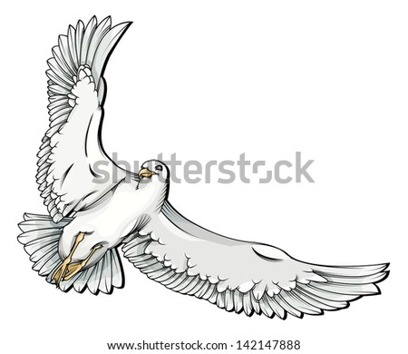 Vector drawing/Flying seagull/Vector drawing, easy to edit layers, easy to edit grouped object, no gradients used