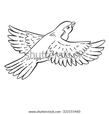 Vector drawing of a cartoon bird line drawing easy to edit layers and groups