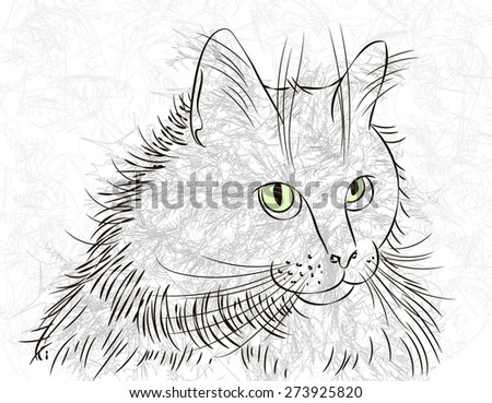Vector Drawing Cats Head Ink Stock Vector (Royalty Free) 273925820 ...