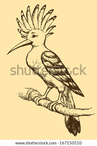 "Vector drawing of a series of monochrome sketches ""Birds"". The Hoopoe, a colorful bird that is found across Africa and Eurasia"