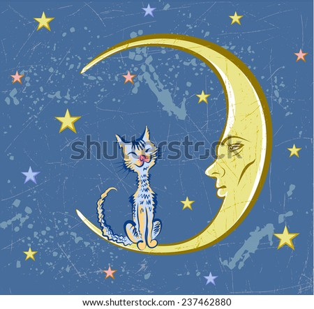 Vector drawing of the Moon with human face on background of the night sky. Cat sits on the Moon.