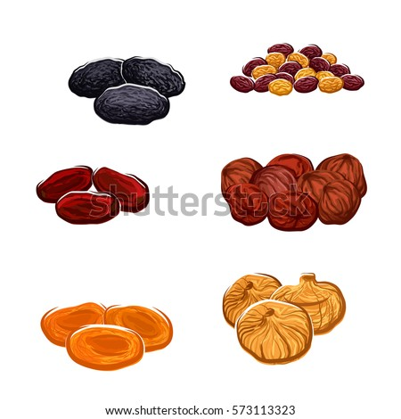 Vector dried fruits. Isolated raisins of grape, dates and juicy exotic figs, apricots, plums and black prunes. Vegetarian food nutrition, sweets and dessert snacks