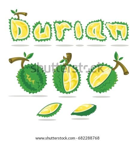 Vector durian and Font design. King of fruit Thailand