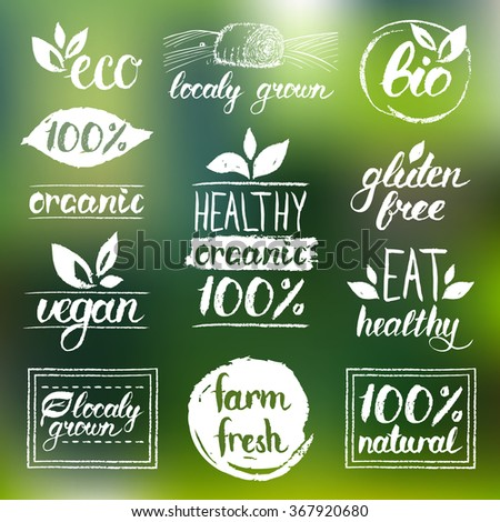 Vector eco organic bio logos. Handwritten healthy eat retro logotypes set. Vegan, natural food and drink signs. Farm market, store icons collection. Raw food badges, labels. - stock vector