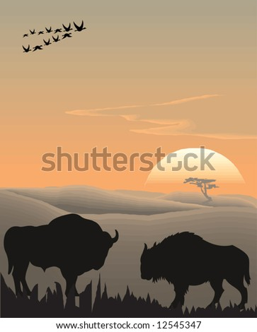 Vector evening landscape illustration with wild animals