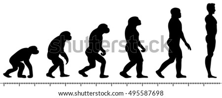 Evolution Of Man Stock Images, Royalty-Free Images & Vectors ...