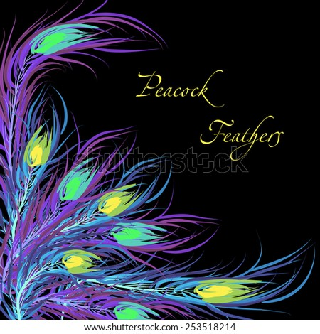 Vector feathers peacock with black background. Fashionable design eps10. - stock vector