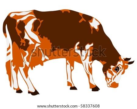 Vector figure of the cow