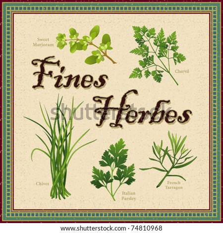 vector - Fines Herbes. Classic French herb blend for cooking: Sweet Marjoram, Chervil, Chives, Italian Parsley, Tarragon. Textured background, antique mosaic frame. EPS8 in groups for easy editing. - stock vector