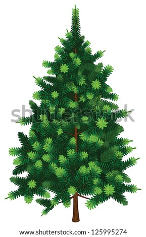 Vector Fir Tree - stock vector