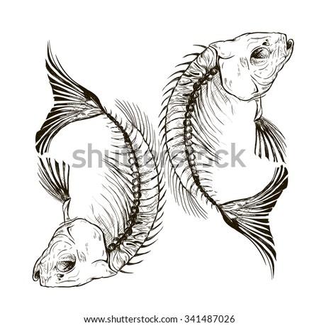 vector fish skeleton talisman sign stock vector 341487026 shutterstock. Black Bedroom Furniture Sets. Home Design Ideas