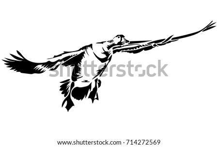 vector flat illustration of black silhouette flying goose element for design
