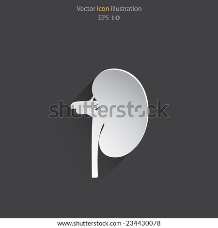 Vector flat kidney icon. Eps 10. - stock vector