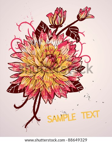 vector floral illustration with a  colorful blooming chrysanthemum - stock vector