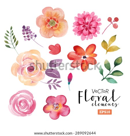 Vector floral set. Colorful floral collection with leaves and flowers, drawing watercolor. Spring or summer design for invitation, wedding or greeting cards - stock vector