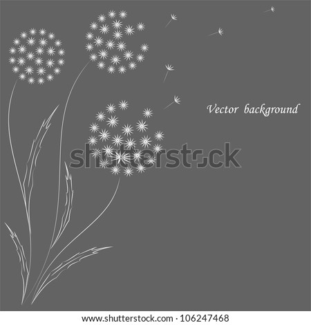 Vector flower background with dandelions. - stock vector