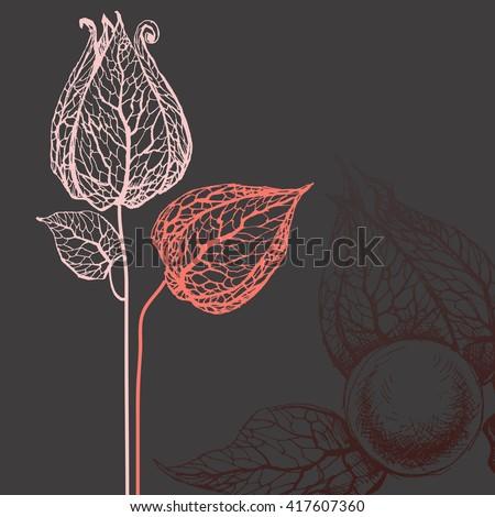 Vector flowers over dark background - stock vector