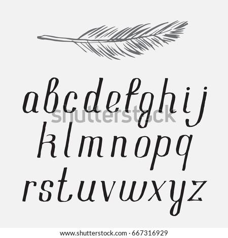 Vector Font Alphabet Handwritten Brush Script