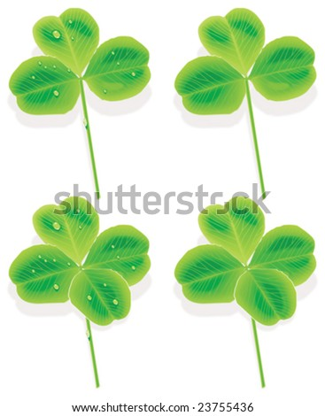 Vector four and three leaf clover. With raindrops and without - stock vector
