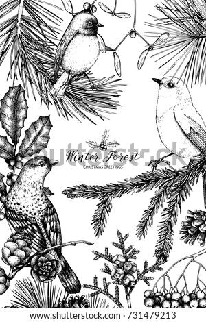 Vector frame with hand drawn conifers, holly berries, mistletoe, cones, mountain ash. Holiday decor elements. Vintage Christmas or New Year card design with bird. Winter template