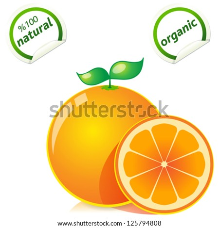 Vector fresh ripe oranges with leaves. - stock vector