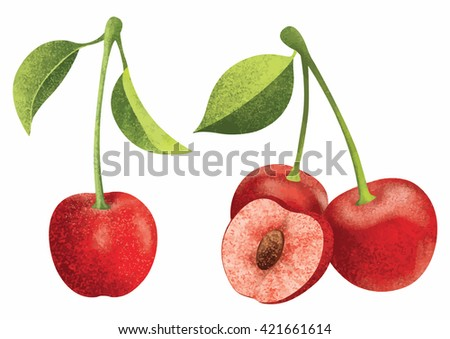 Vector fresh ripe red cherries with leaves.Different styles of cherry on white background. - stock vector