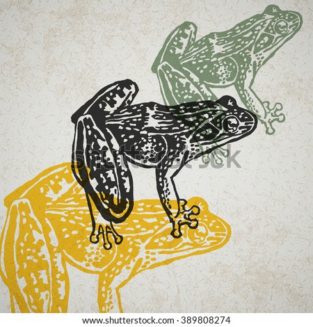 Vector frog in abstract composition. Engraved Frogs in different colors on old paper - stock vector