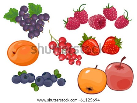 vector fruit and berry set #2 isolated on white - stock vector