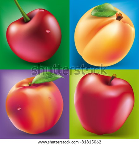 vector fruits cherry, apple, apricot and peach - stock vector