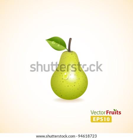 Vector fruits illustration. - stock vector