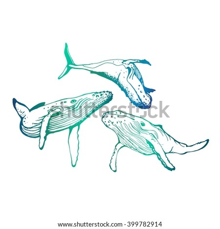 Vector. Gradient. Hand-drawn whales